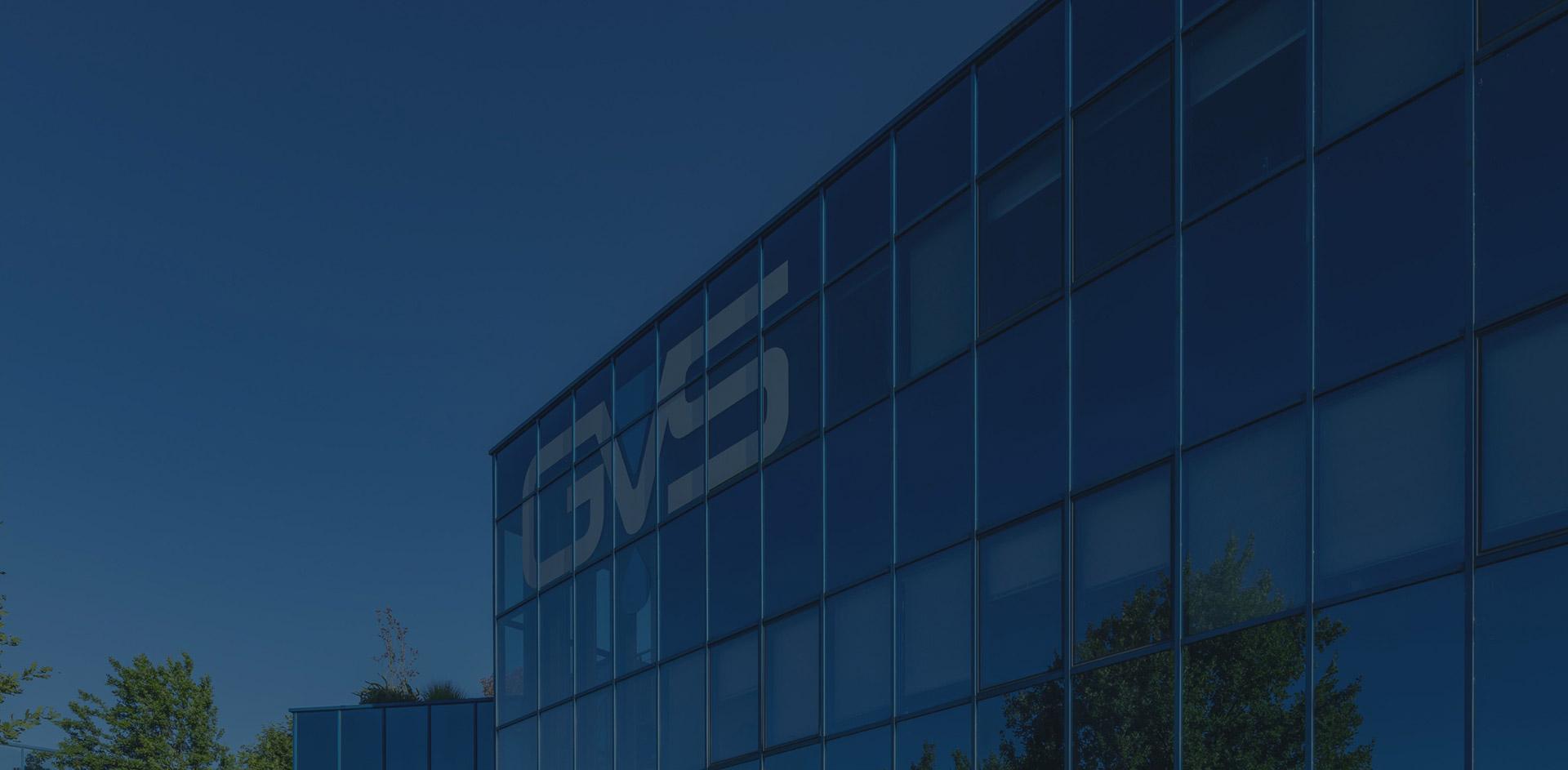 Internal Dealing - GVS